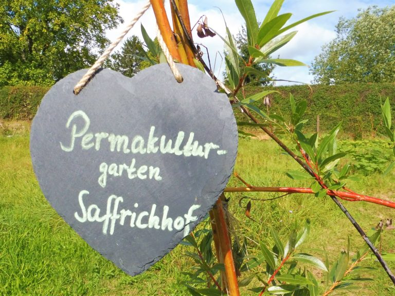 PermakulturgartenSaffrichhof
